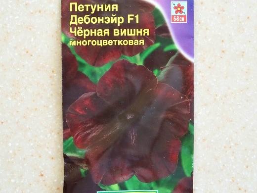 лучшие сорта петунии - названия гибридов, фото - дебонэйр f1 чёрная вишня (многоцветковая)