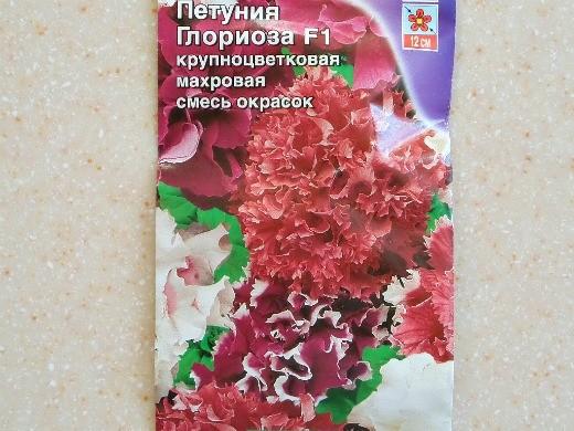 лучшие сорта петунии - названия гибридов, фото - глориоза f1 (махровая, гофрированная, крупноцветковая)