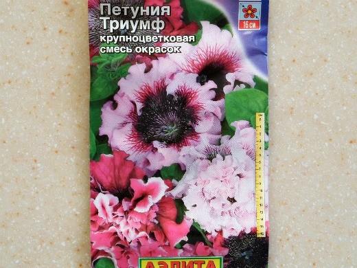 лучшие сорта петунии - названия гибридов, фото - триумф (крупноцветковая)