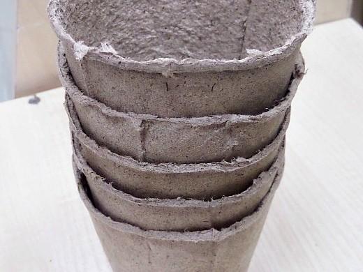 торфяные горшочки для рассады, как пользоваться