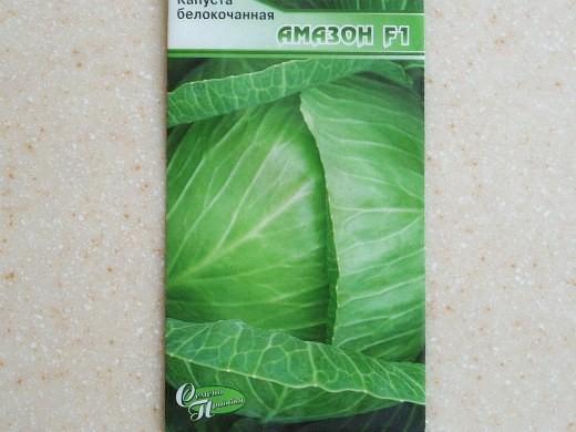 лучшие сорта капусты белокочанная амазон f1