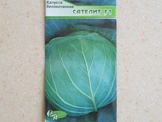 лучшие сорта капусты белокочанная cателит f1