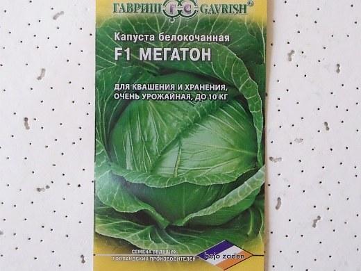лучшие сорта капусты белокочанная мегатон f1