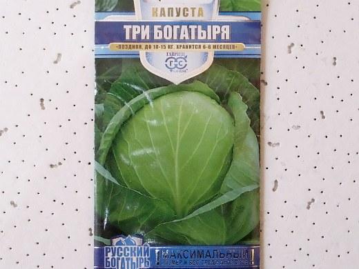 лучшие сорта капусты белокочанная три богатыря