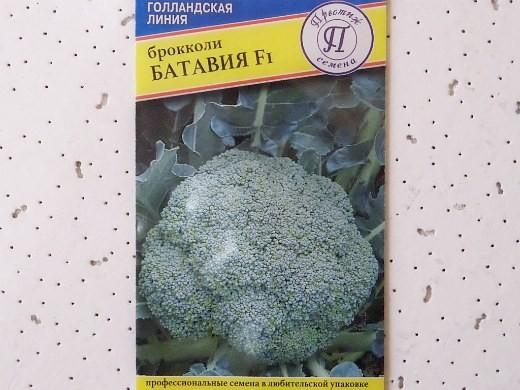 лучшие сорта капусты брокколи батавия f1