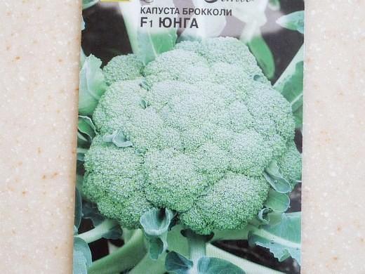 лучшие сорта капусты брокколи юнга f1