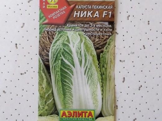 лучшие сорта капусты пекинская ника f1