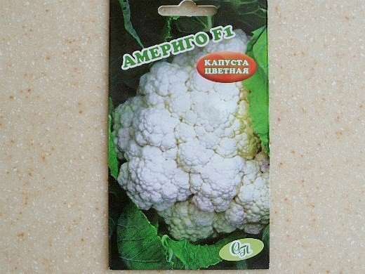 лучшие сорта капусты цветная америго f1