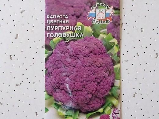 лучшие сорта капусты цветная пурпурная головушка