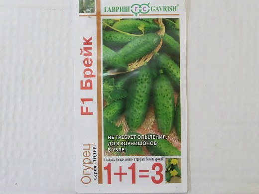 лучшие сорта огурцов для открытого грунта и теплицы - семена брейк f1