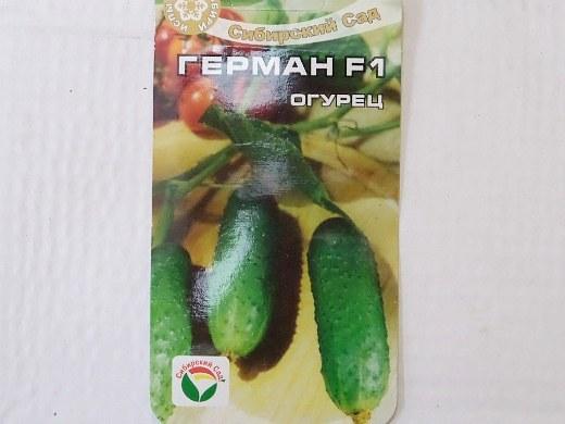 лучшие сорта огурцов для открытого грунта и теплицы - семена герман f1
