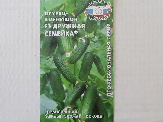 лучшие сорта огурцов-корнишонов для открытого грунта и теплицы - семена дружная семейка f1