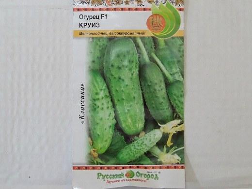 лучшие сорта огурцов для открытого грунта и теплицы - семена круиз f1