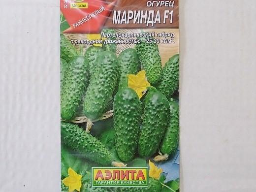 лучшие сорта огурцов для открытого грунта и теплицы - семена маринда f1