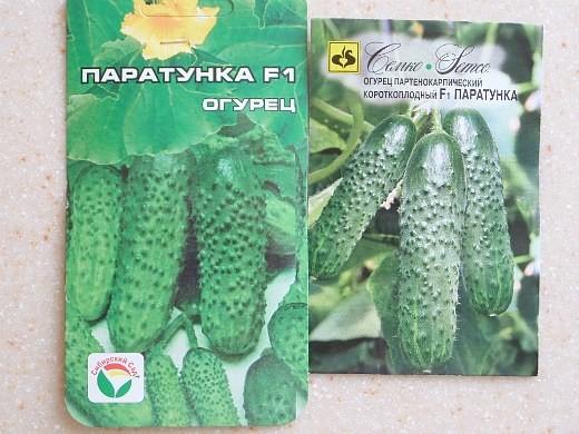 лучшие сорта огурцов для открытого грунта и теплицы - семена паратунка f1