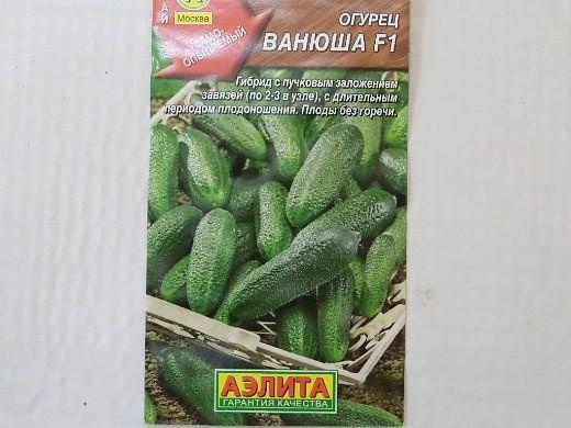 лучшие сорта огурцов для открытого грунта и теплицы - семена ванюша f1