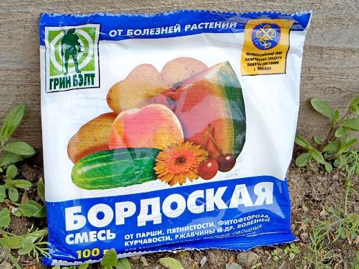 опрыскивание сада весной от вредителей и болезней - бордоская смесь
