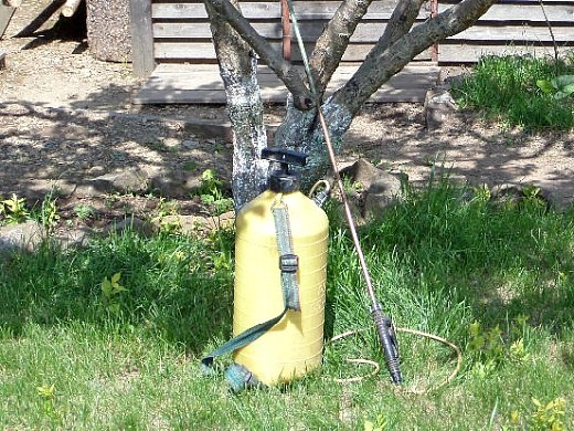 опрыскивание сада весной от вредителей и болезней - опрыскиватель садовый
