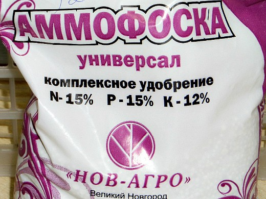 удобрения для лука, подкормка - аммофоска