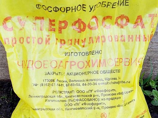 удобрения для лука, подкормка - суперфосфат