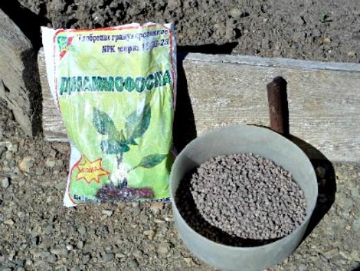 удобрения для пионов при посадке и выращивании - диаммофоска