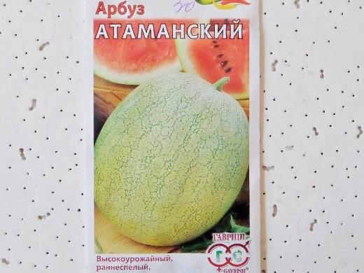 лучшие сорта арбузов с фото и описанием - атаманский