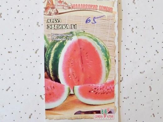 лучшие сорта арбузов с фото и описанием - эврика f1