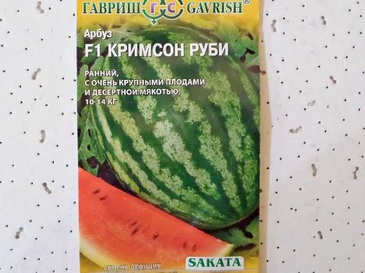 лучшие сорта арбузов с фото и описанием - f1 кримсон руби
