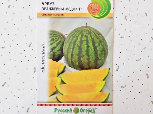 лучшие сорта арбузов с фото и описанием - оранжевый медок f1