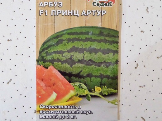 лучшие сорта арбузов с фото и описанием - f1 принц артур