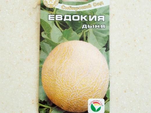лучшие сорта дыни для открытого грунта и теплицы - евдокия