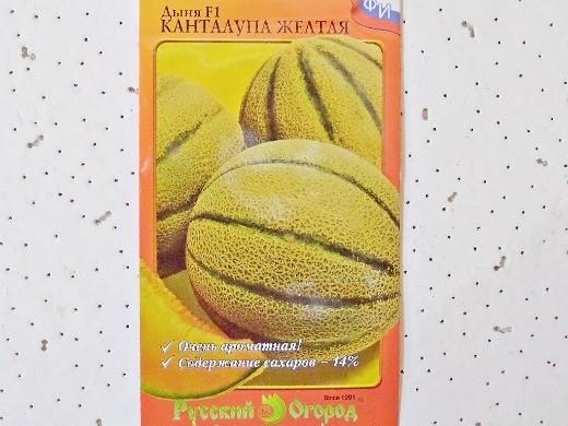 лучшие сорта дыни для открытого грунта и теплицы - f1 канталупа желтая