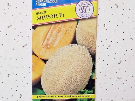 лучшие сорта дыни для открытого грунта и теплицы - мирон f1