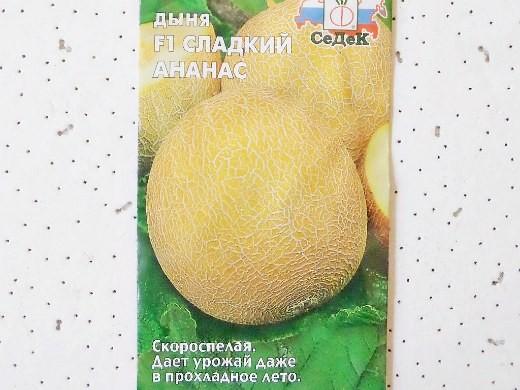 лучшие сорта дыни для открытого грунта и теплицы - f1 сладкий ананас