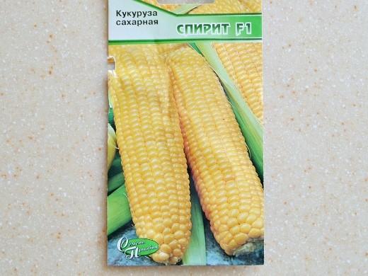 лучшие сорта кукурузы для любых регионов россии - сахарная спирит f1