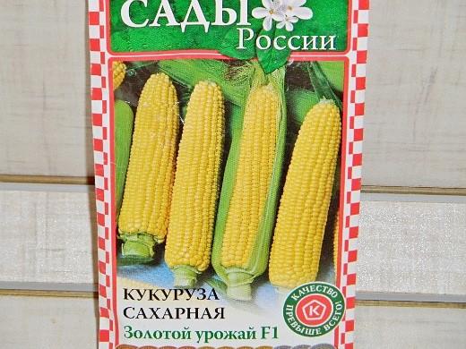 лучшие сорта кукурузы для любых регионов россии - сахарная золотой урожай f1