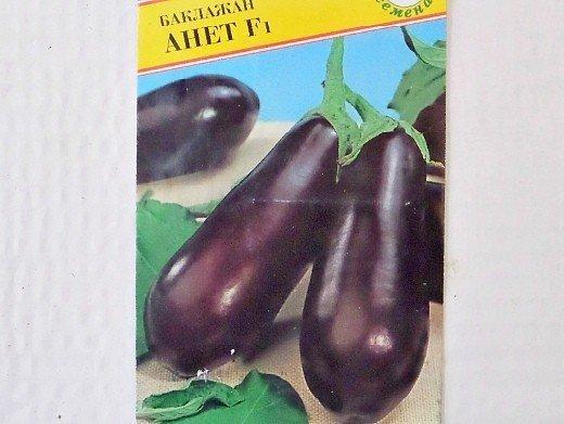 баклажан f1 анет, лучшие сорта для открытого грунта и теплиц