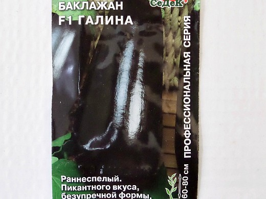 баклажан f1 галина, лучшие сорта для открытого грунта и теплиц