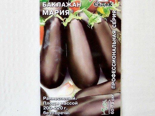 баклажан мария, лучшие сорта для открытого грунта и теплиц