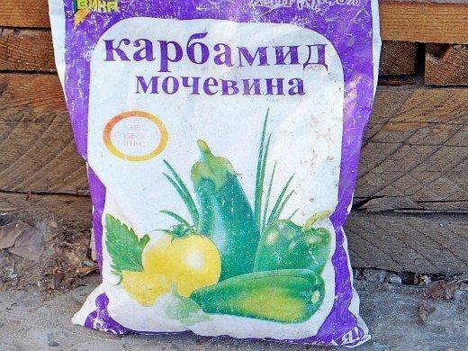 удобрения для чеснока при посадке весной и осенью - карбамид (мочевина)_
