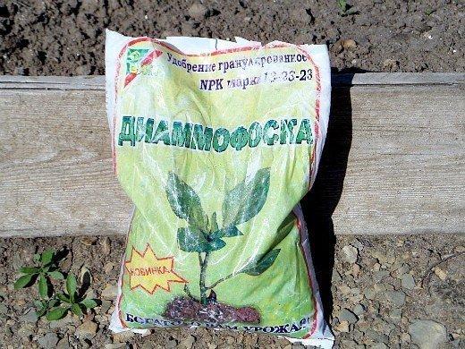 удобрения для моркови при посадке весной и осенью - диаммофоска
