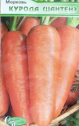удобрения для моркови при посадке весной и осенью - семена сорт курода шантенэ
