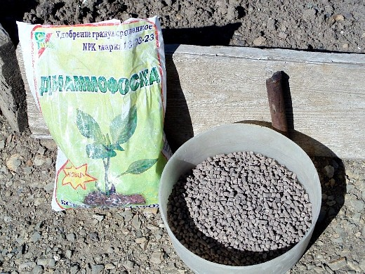 удобрения для кукурузы при посадке и выращивании - диаммофоска