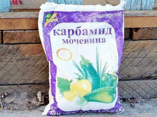 удобрения для кукурузы при посадке и выращивании - карбамид (мочевина)