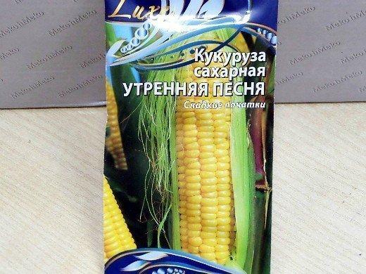 удобрения для кукурузы при посадке и выращивании - семена сорт сахарная утренняя песня
