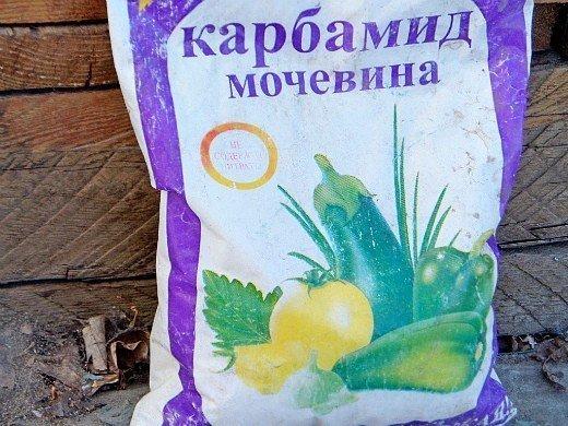 удобрения для свеклы при посадке и выращивании - мочевина (карбамид)