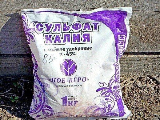 удобрения для свеклы при посадке и выращивании - сульфат калия