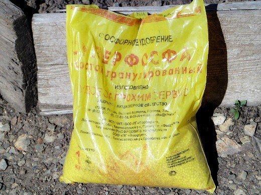 удобрения для свеклы при посадке и выращивании - суперфосфат