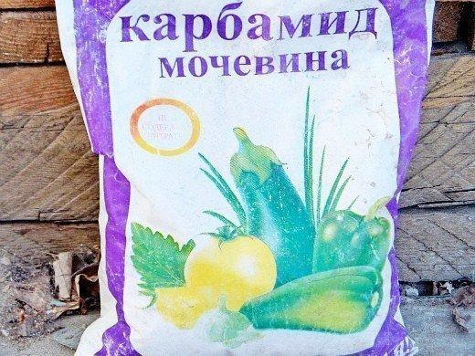 как повысить урожайность баклажанов - удобрение мочевиной