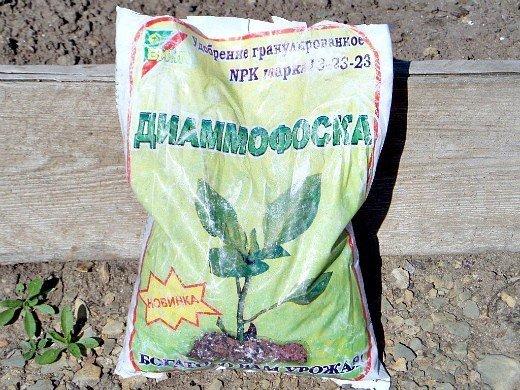 как повысить урожайность капусты в открытом грунте - удобрение диаммофоска